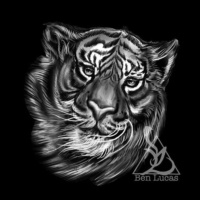 dd8cfab3b6a9a Quick#sketch for tomorrow's #tiger #tattoo Beverly.#black#grey #benlucas  #eyeofjadetattoo