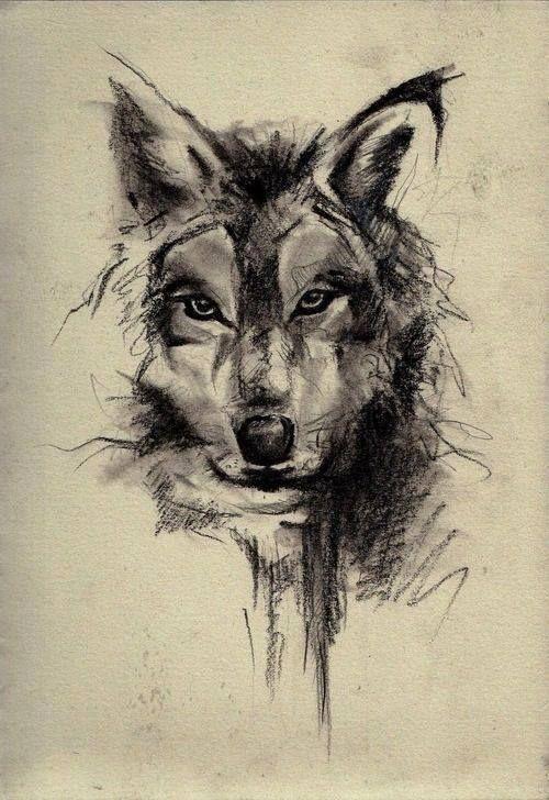 Wolf Tattoo On My Chest Tattoo Com